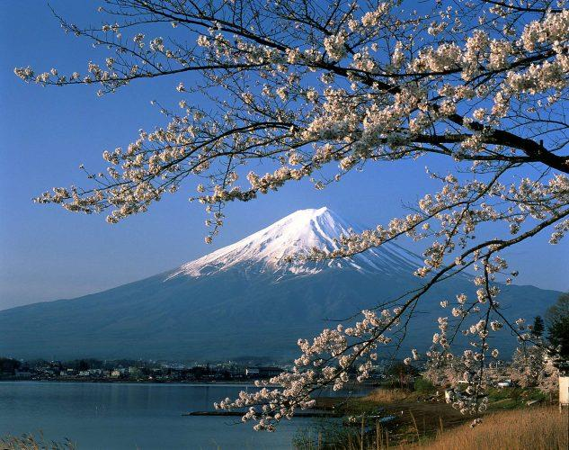 Japan_Mount_Fuji_bloesem