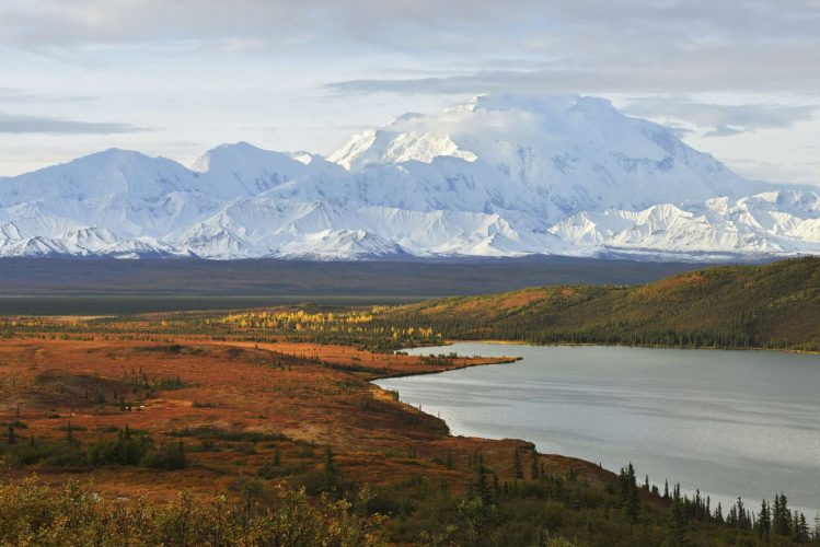 USA_Alaska_Denali_National_Park