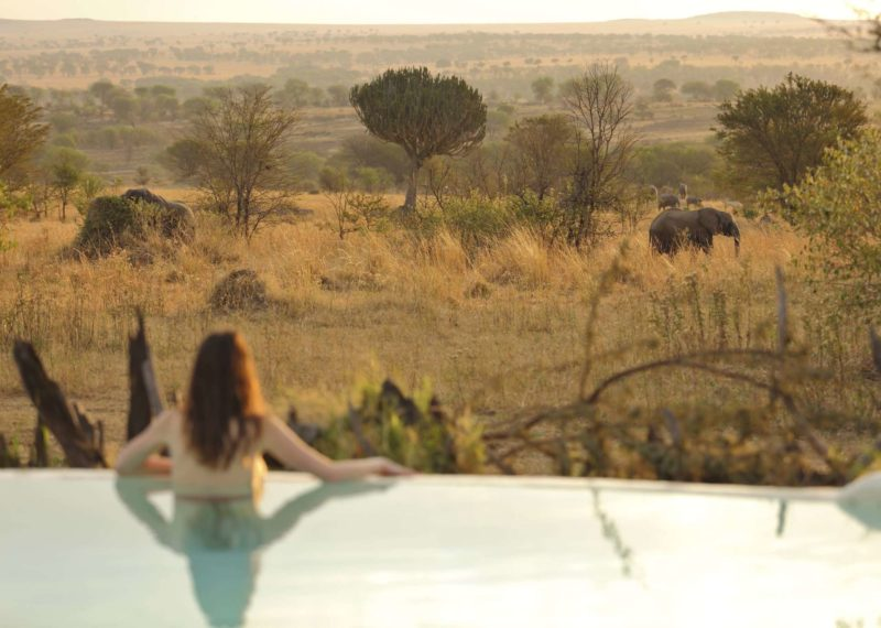 Tanzania_Serengeti_Asilia_Sayari-swimming-pool-watching-elephants-landscape